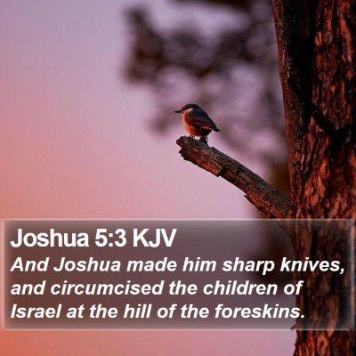 Joshua 5:3 KJV Bible Verse Image