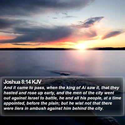 Joshua 8:14 KJV Bible Verse Image
