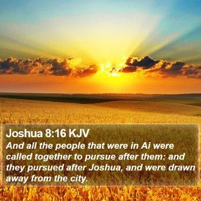 Joshua 8:16 KJV Bible Verse Image