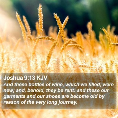 Joshua 9:13 KJV Bible Verse Image