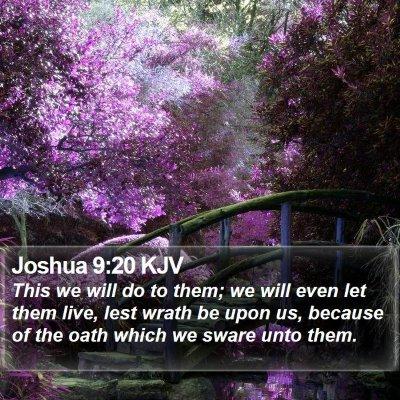 Joshua 9:20 KJV Bible Verse Image