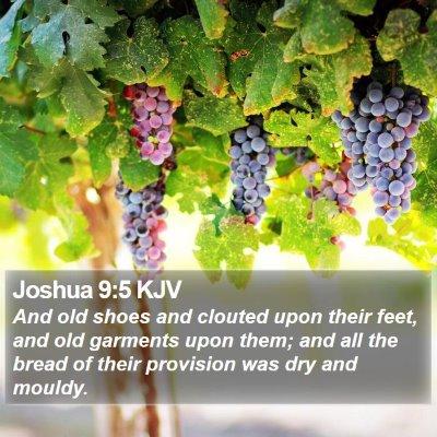 Joshua 9:5 KJV Bible Verse Image