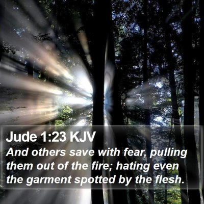 Jude 1:23 KJV Bible Verse Image