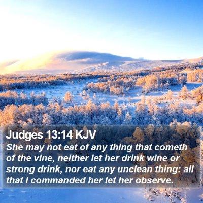 Judges 13:14 KJV Bible Verse Image