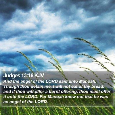 Judges 13:16 KJV Bible Verse Image