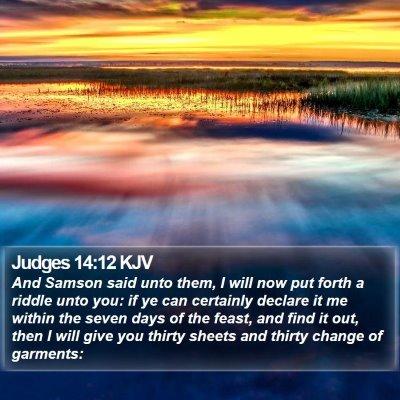 Judges 14:12 KJV Bible Verse Image