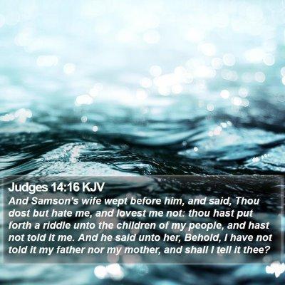 Judges 14:16 KJV Bible Verse Image