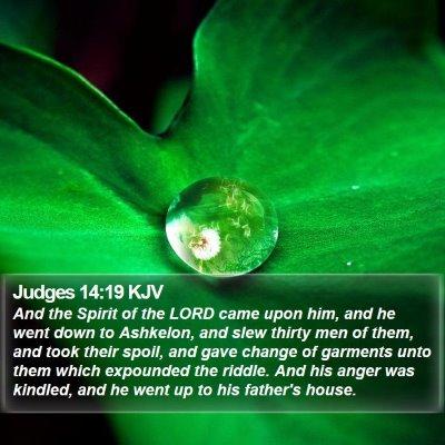 Judges 14:19 KJV Bible Verse Image