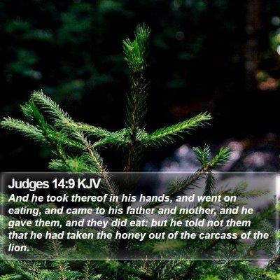 Judges 14:9 KJV Bible Verse Image