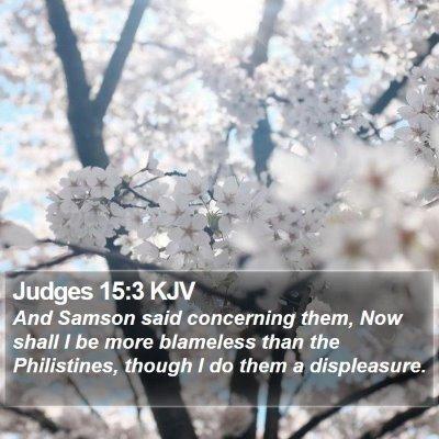 Judges 15:3 KJV Bible Verse Image
