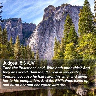 Judges 15:6 KJV Bible Verse Image