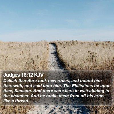 Judges 16:12 KJV Bible Verse Image