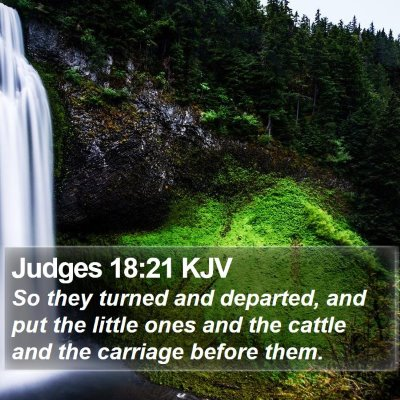 Judges 18:21 KJV Bible Verse Image