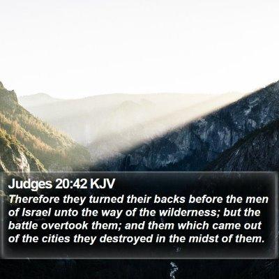 Judges 20:42 KJV Bible Verse Image