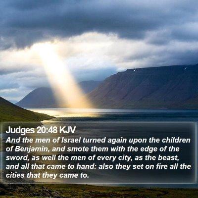 Judges 20:48 KJV Bible Verse Image