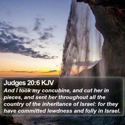 Judges 20:6 KJV Bible Verse Image