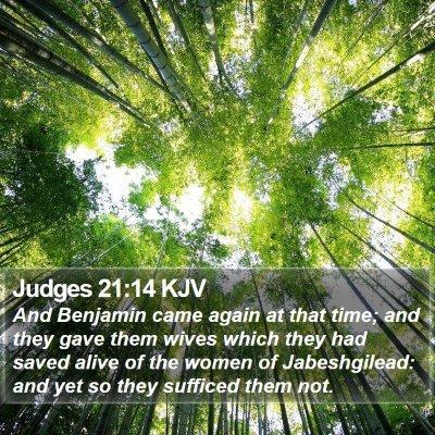 Judges 21:14 KJV Bible Verse Image