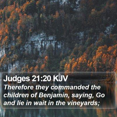 Judges 21:20 KJV Bible Verse Image