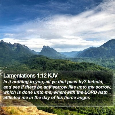 Lamentations 1:12 KJV Bible Verse Image