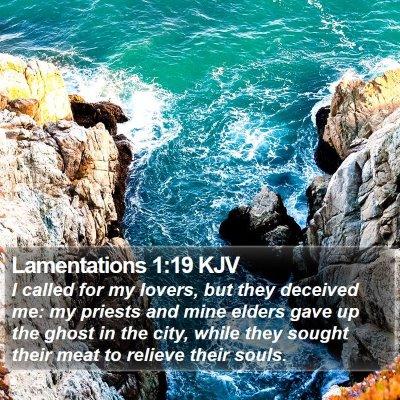 Lamentations 1:19 KJV Bible Verse Image