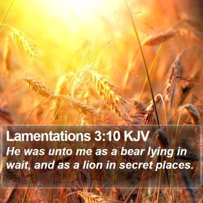 Lamentations 3:10 KJV Bible Verse Image