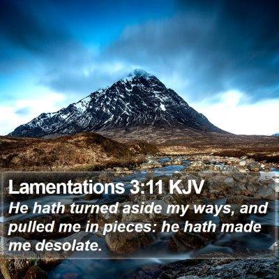 Lamentations 3:11 KJV Bible Verse Image