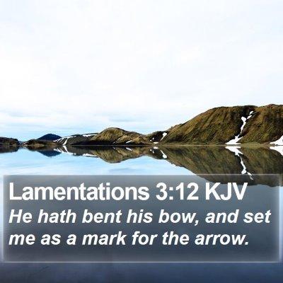 Lamentations 3:12 KJV Bible Verse Image