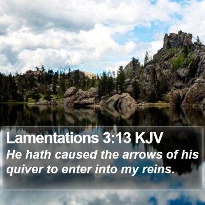 Lamentations 3:13 KJV Bible Verse Image