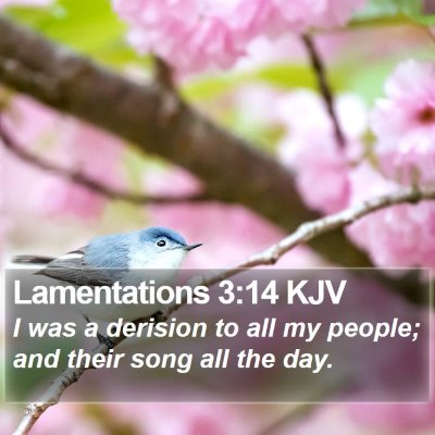 Lamentations 3:14 KJV Bible Verse Image