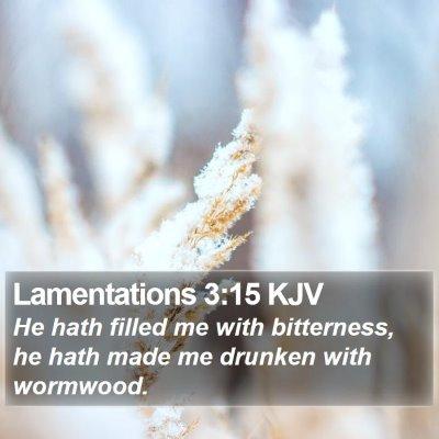 Lamentations 3:15 KJV Bible Verse Image
