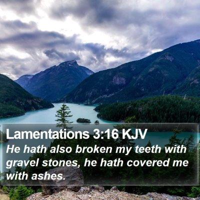 Lamentations 3:16 KJV Bible Verse Image