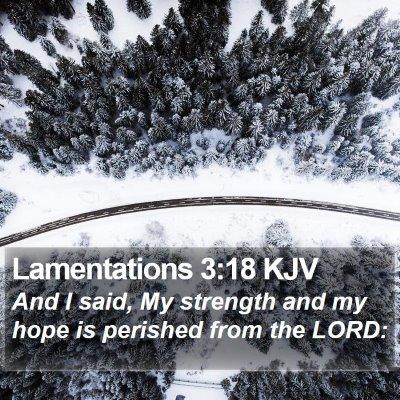 Lamentations 3:18 KJV Bible Verse Image