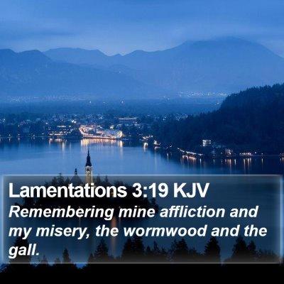 Lamentations 3:19 KJV Bible Verse Image
