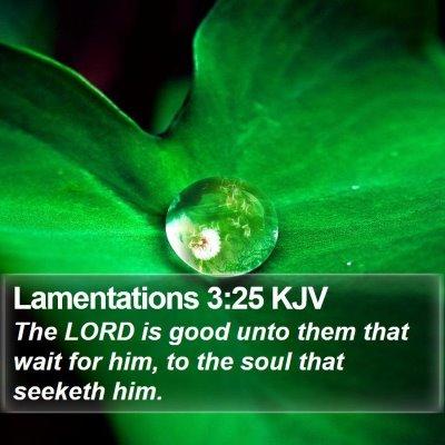 Lamentations 3:25 KJV Bible Verse Image