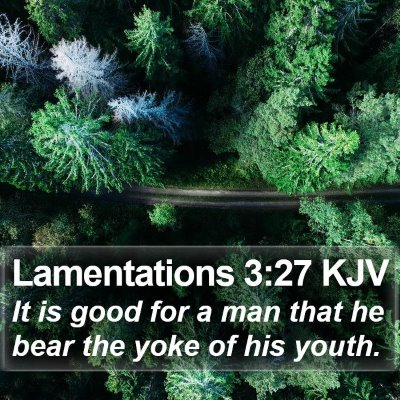 Lamentations 3:27 KJV Bible Verse Image