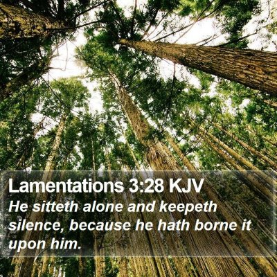 Lamentations 3:28 KJV Bible Verse Image