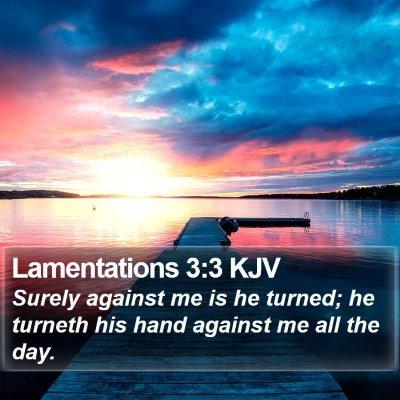 Lamentations 3:3 KJV Bible Verse Image
