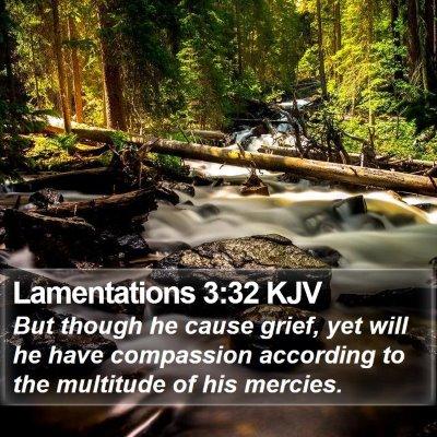 Lamentations 3:32 KJV Bible Verse Image