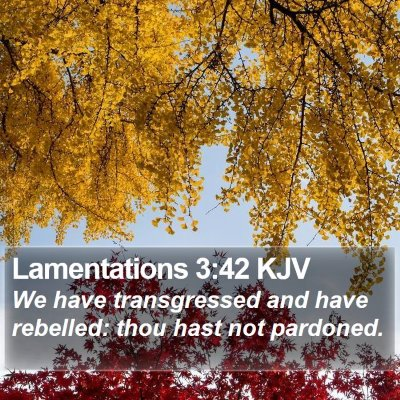 Lamentations 3:42 KJV Bible Verse Image
