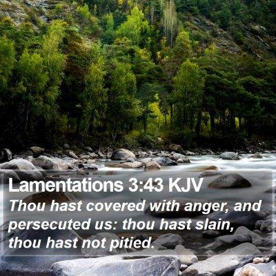 Lamentations 3:43 KJV Bible Verse Image
