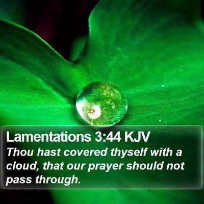 Lamentations 3:44 KJV Bible Verse Image