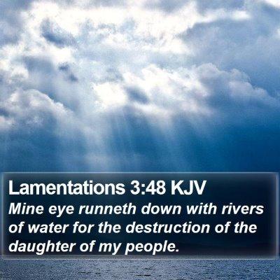 Lamentations 3:48 KJV Bible Verse Image