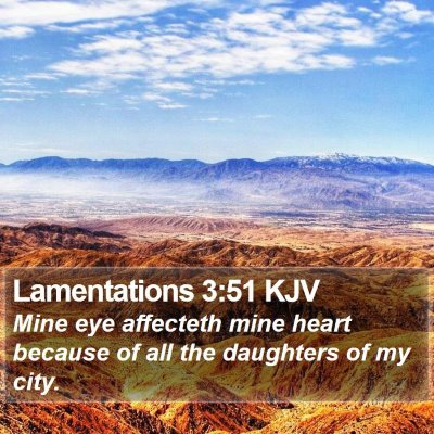 Lamentations 3:51 KJV Bible Verse Image