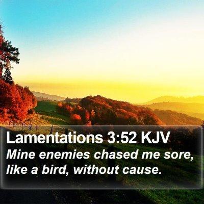Lamentations 3:52 KJV Bible Verse Image