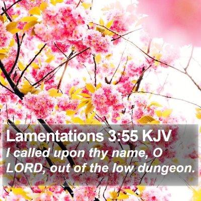 Lamentations 3:55 KJV Bible Verse Image