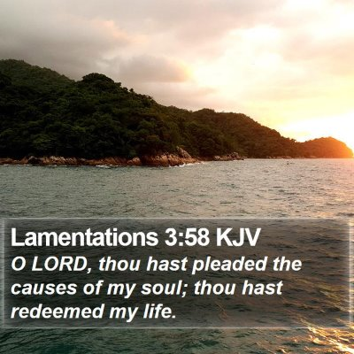 Lamentations 3:58 KJV Bible Verse Image