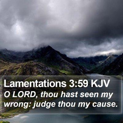 Lamentations 3:59 KJV Bible Verse Image