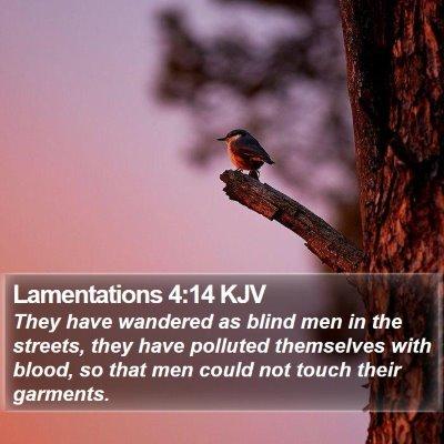 Lamentations 4:14 KJV Bible Verse Image