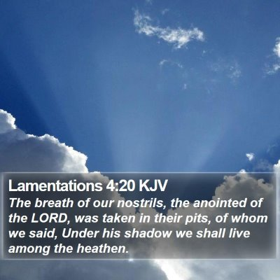 Lamentations 4:20 KJV Bible Verse Image