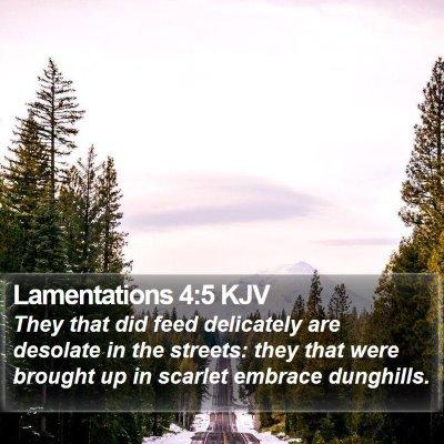 Lamentations 4:5 KJV Bible Verse Image